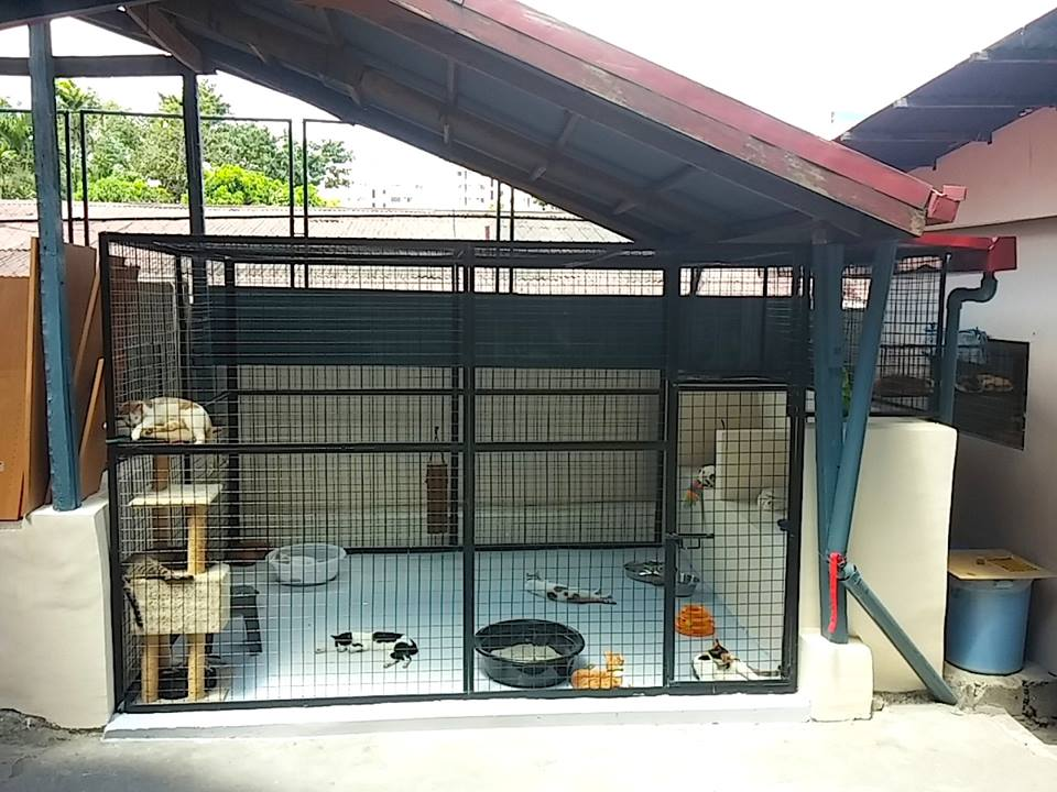 Small Dog Cage For Sale Philippines