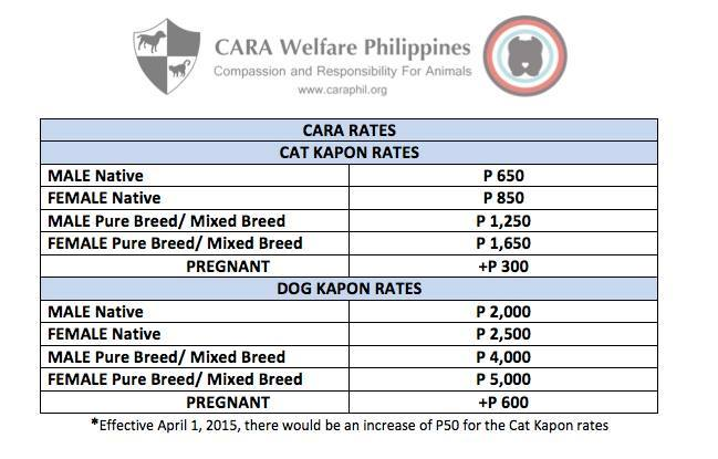 Updated Spay Neuter Fees at CARA Clinic