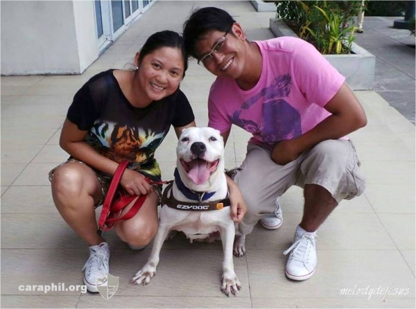 CARA Welfare Philippines – Animal Welfare – dog adoption success story – Snowflake