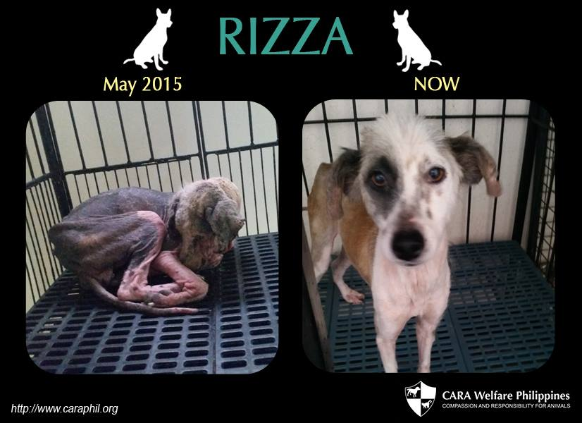 Rizza is now a sweet beauty!