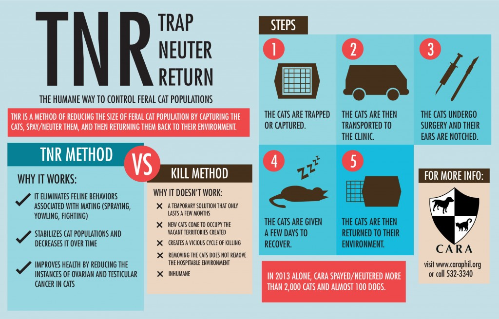 Trap Neuter Return Infographic