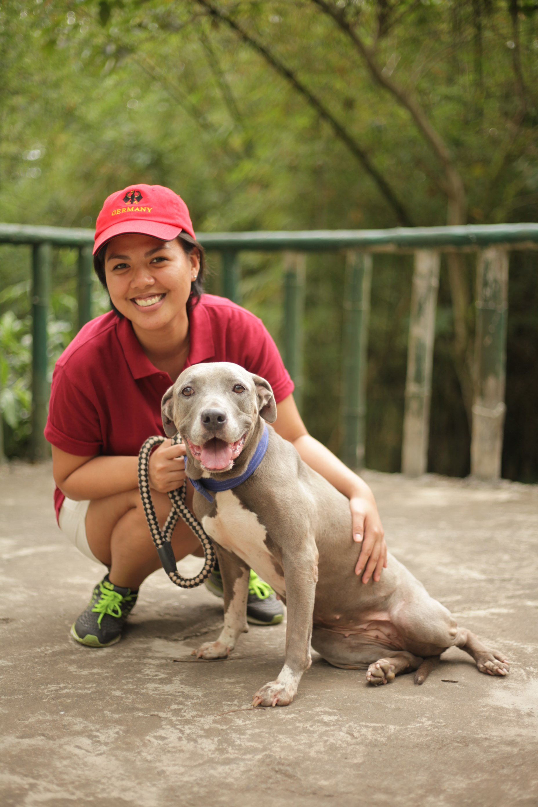 My Day With The Laguna Pit Bulls