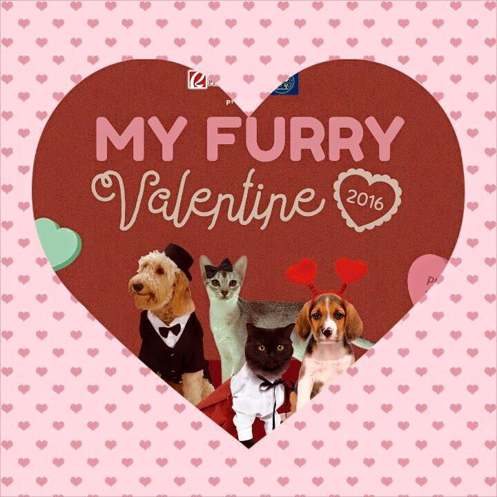 Invitation to Pet-Loving Events this February