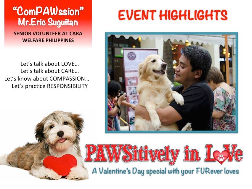 Are you PAWsitively in Love?