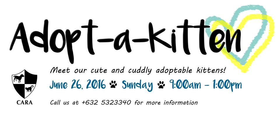 Adopt-a-Kitten on June 26!