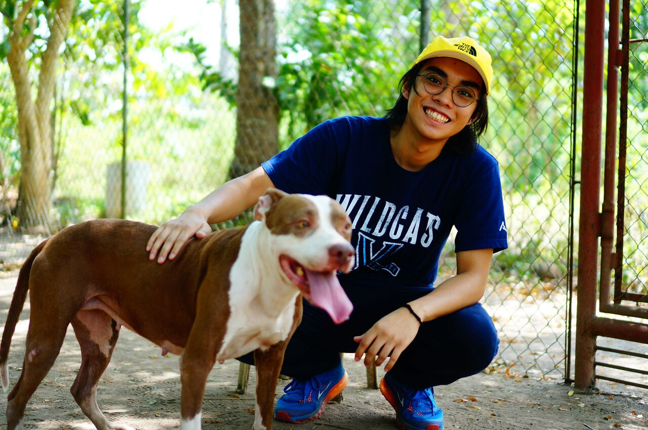 The LPB Center: My First Encounter with the Laguna Pit Bulls