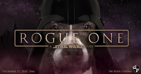 Save the Date: Rogue One