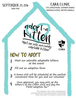 Adopt-a-Kitten on Sept 25!