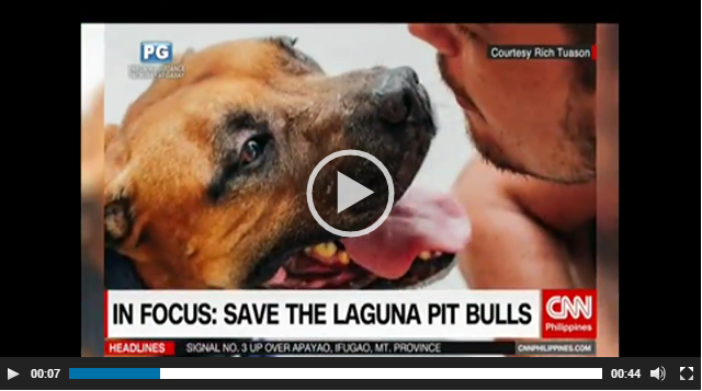 We've been featured! Thank you CNN Philippines