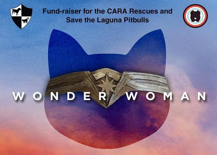 Big Thank You for Making the Wonder Woman Screening a Success!