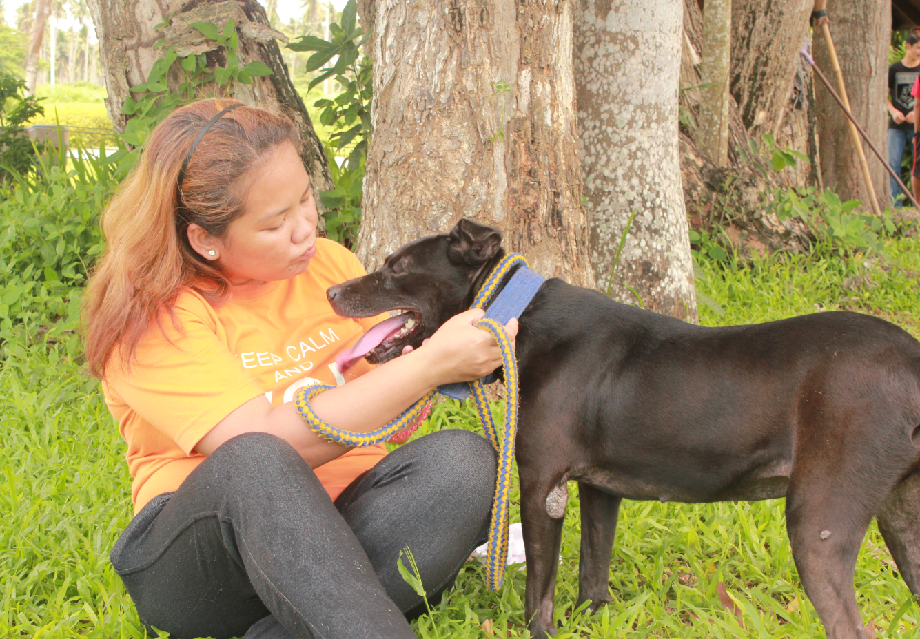 Volunteer Helps Rescued Pit Bulls Recover, Named Hero by Thomson Reuters