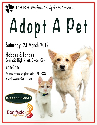 Next Adoption Event on 24th March, 2012 Outside Hobbes & Landes, Bonifacio High St, 4-8 pm