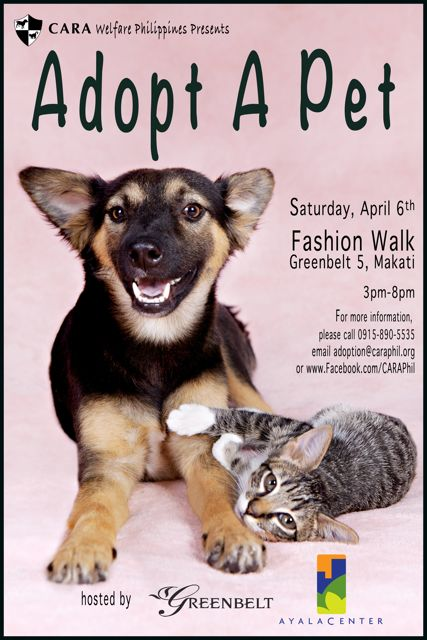 Adopt a Pet at Greenbelt!
