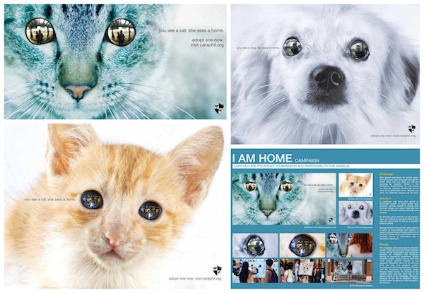 """I Am Home"" Campaign for CARA Wins Advertising Award"