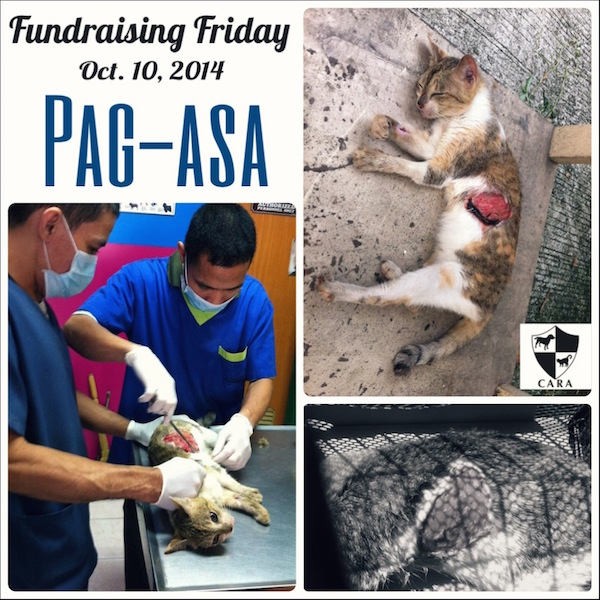 Fundraising Friday: PAG-ASA