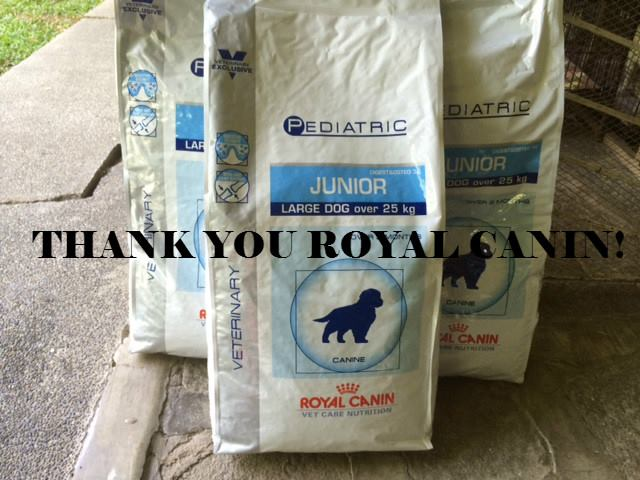 Thank you, Royal Canin!