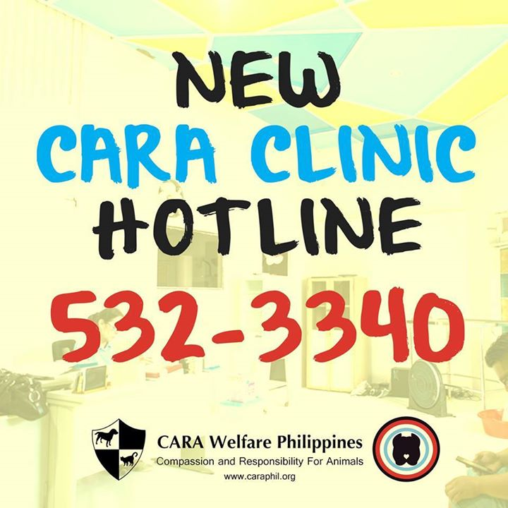 New CARA Clinic (pet spay and neuter clinic)