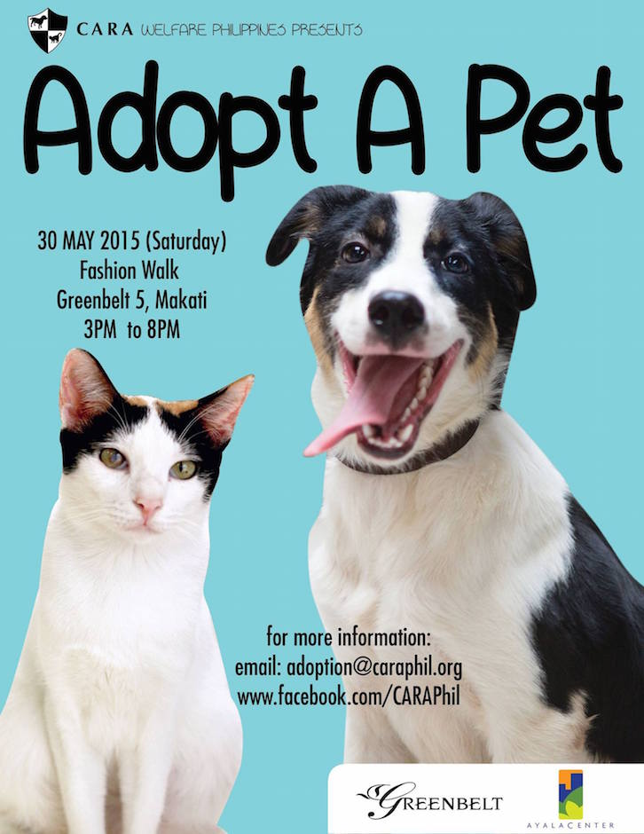 Our Adoption Event is Happening This May!