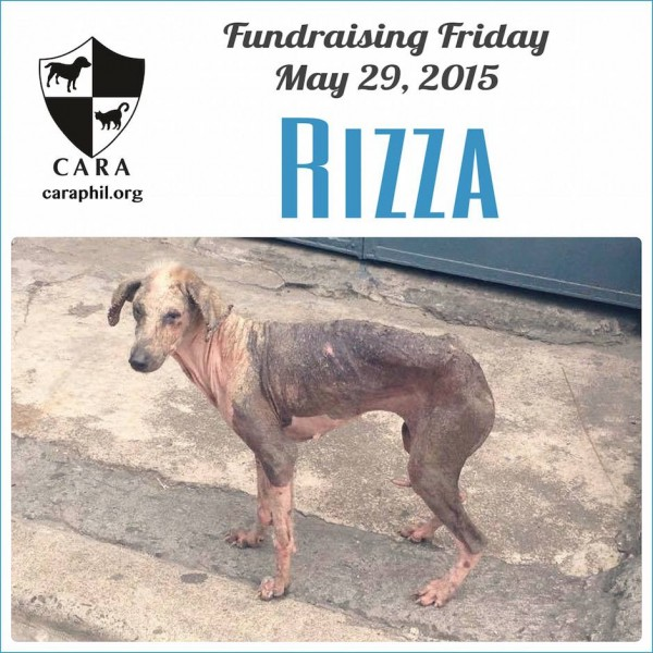 #Fundraising Friday for Rizza's speedy recovery