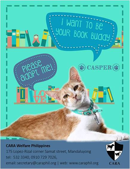 Are you young at heart? Casper would like to meet you.