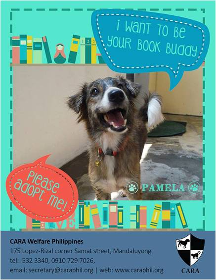 Do you need a Book Buddy? Meet Pamela!