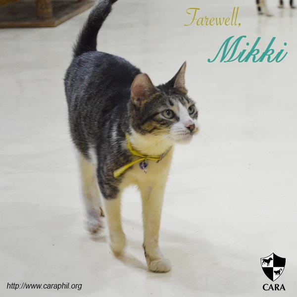 Farewell, Mikki.