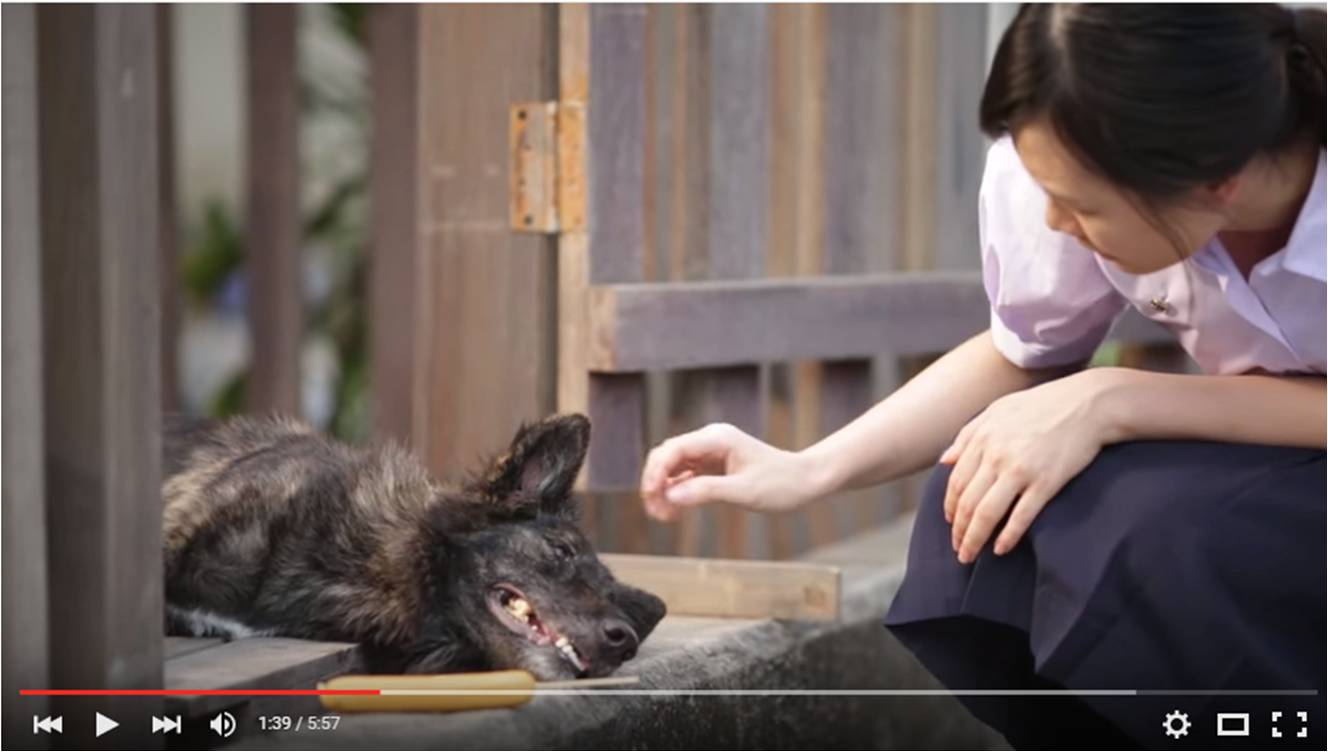 Video: A girl and the dog who taught her to dream and to love