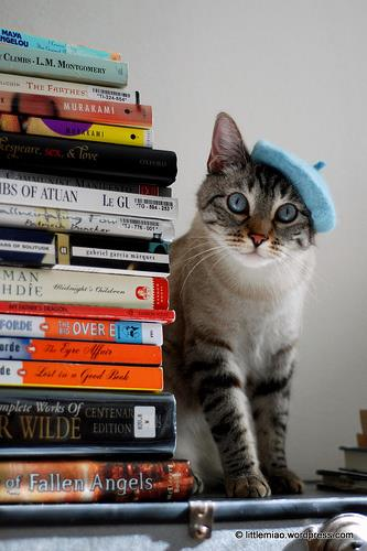 Got too many books? Donate them to CARA!