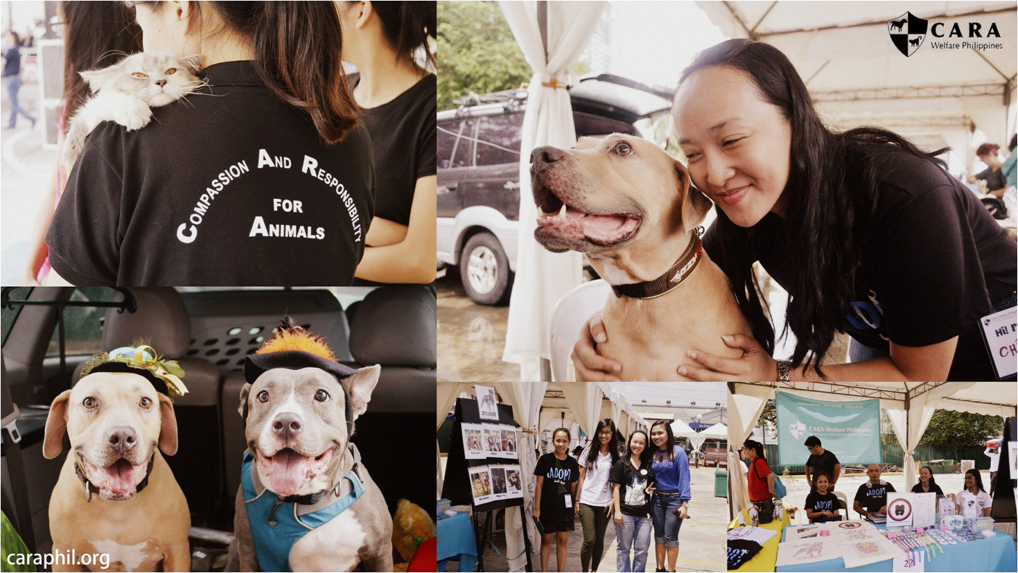 Himas for a Cause at the Philippine Grand Festival of Pets