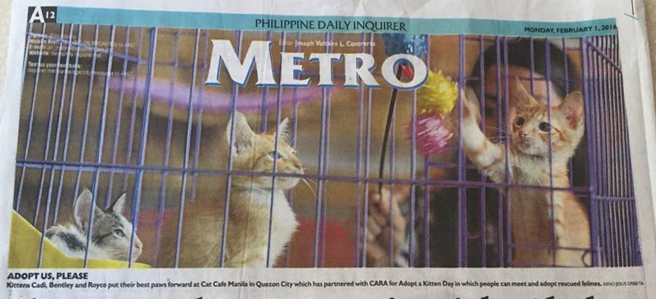 Thank You for Coming! (Philippine Daily Inquirer in Cat Cafe Manila)