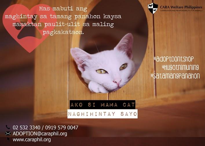 Hugot ni Mama Cat – #satamangpanahon