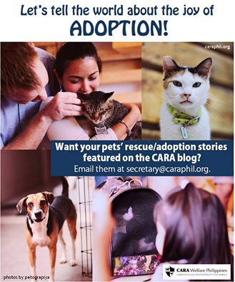 Spread the joy of adoption