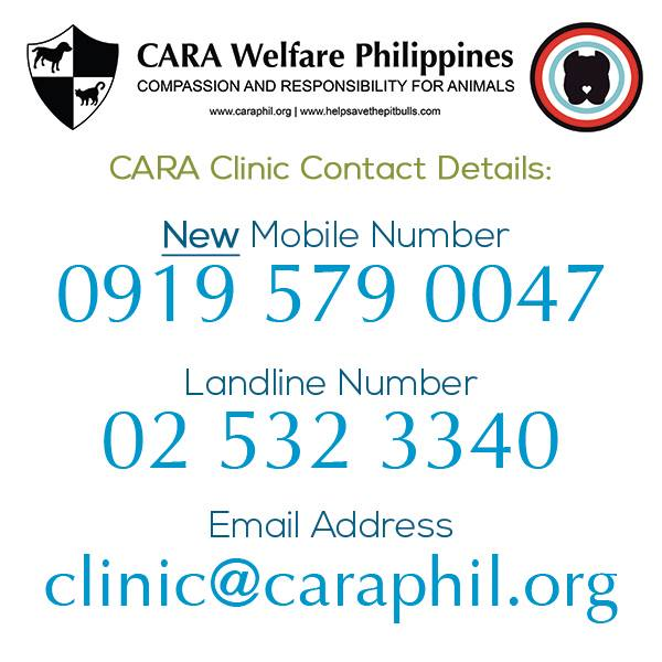 CARA has new contact info