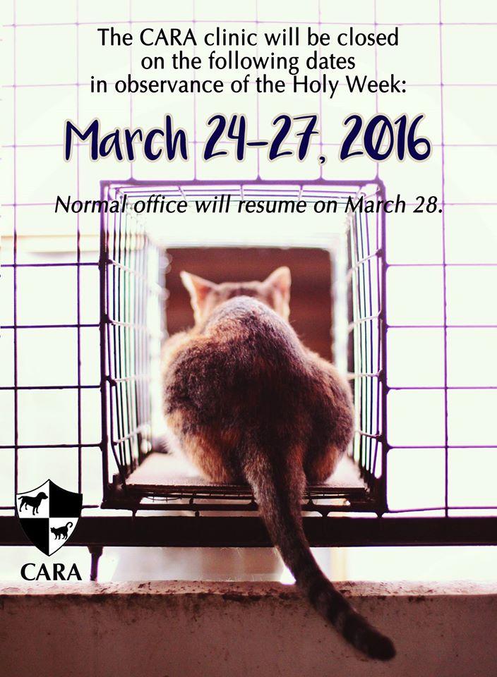 CARA: Holy Week Announcement