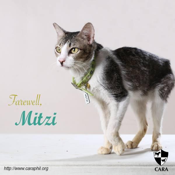 Farewell, Mitzi