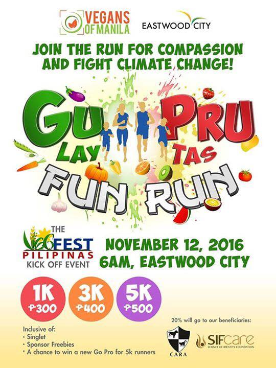 Run for a Cause: GuPru