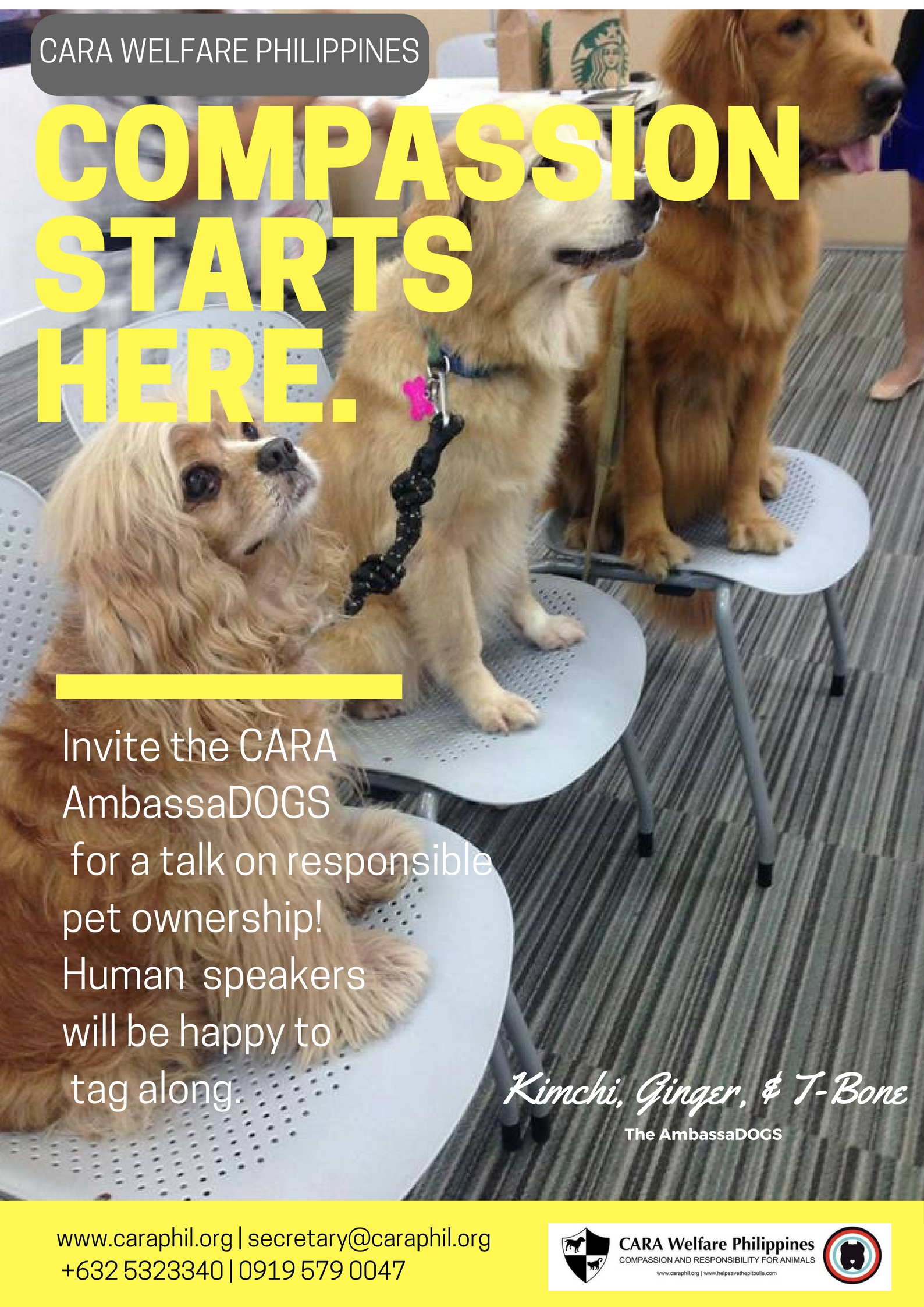 Invite CARA to Speak About Responsible Pet Ownership
