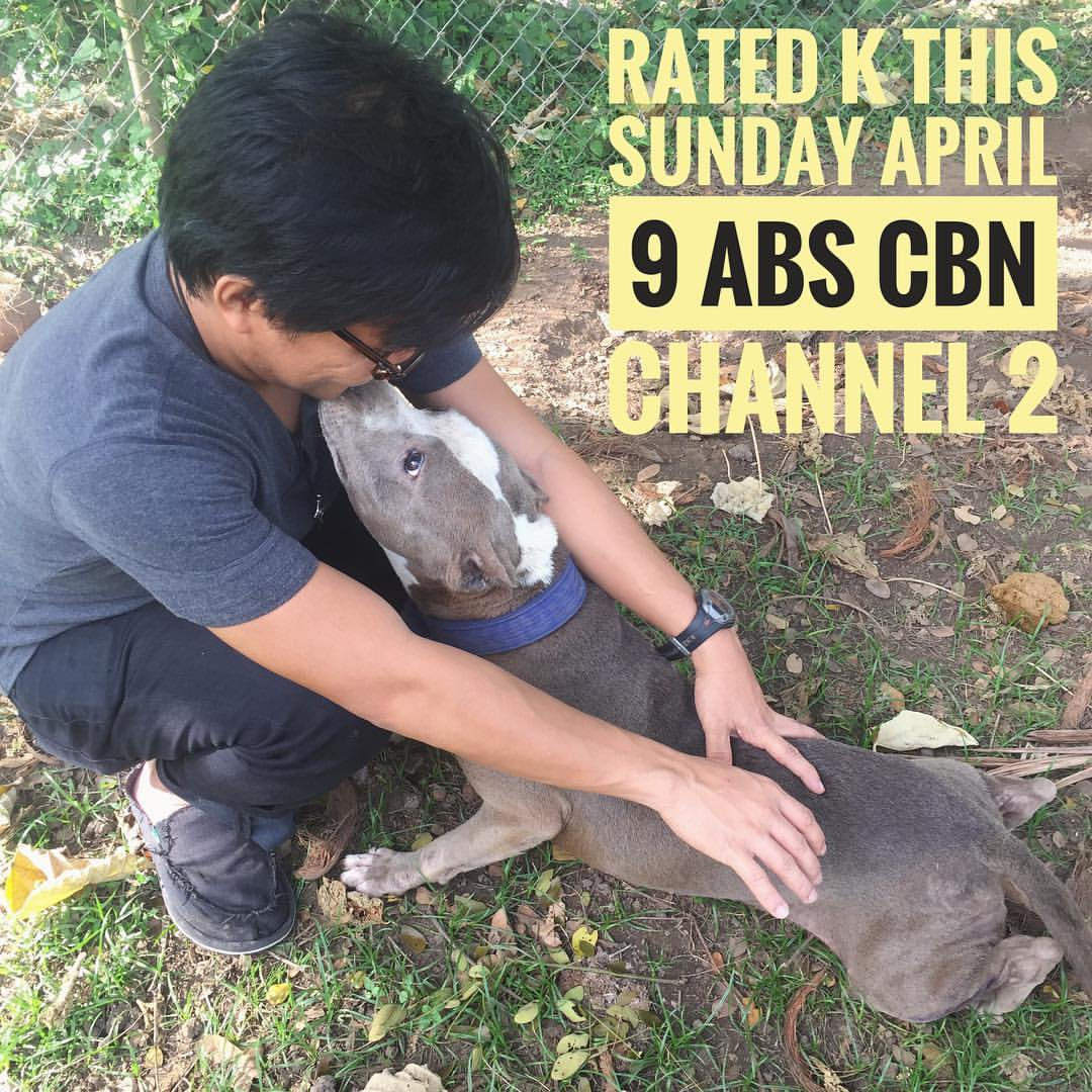 Laguna Pit Bull on Rated K