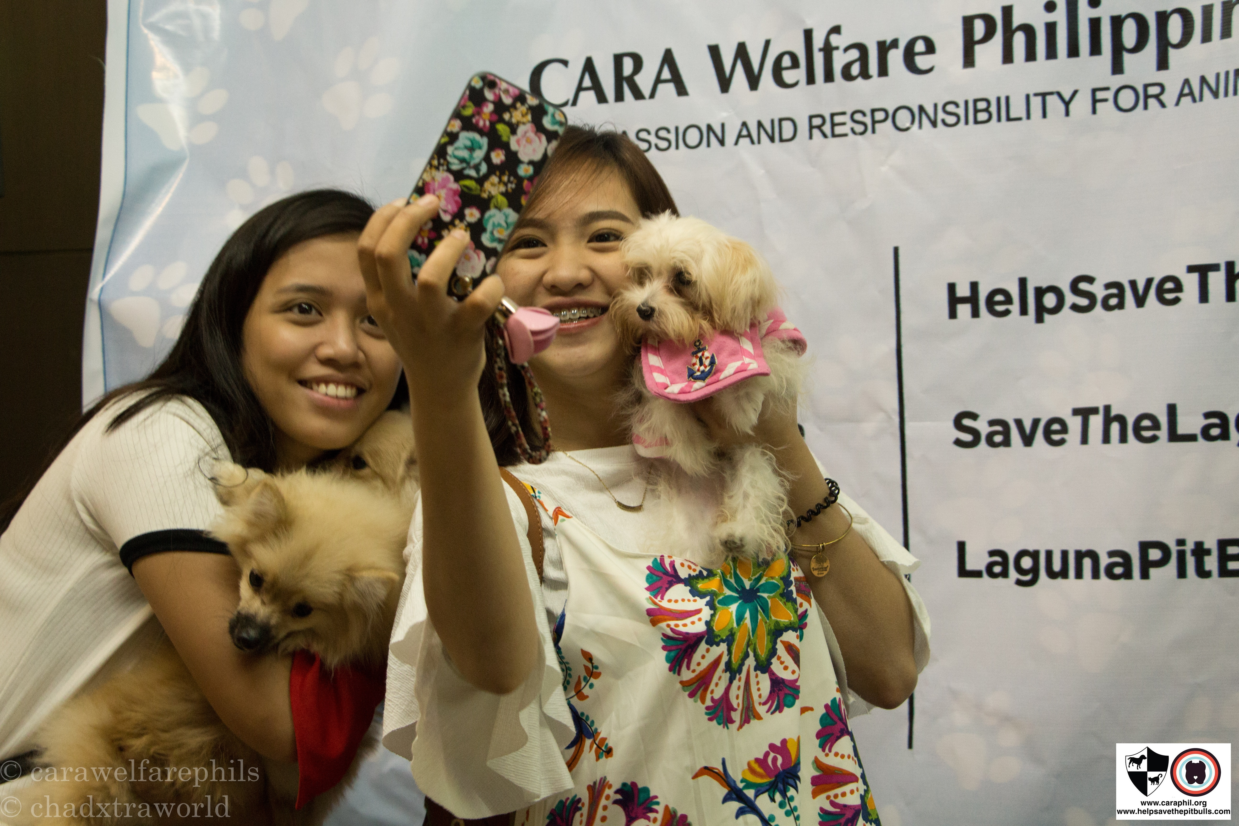 Selfies with Pets, Discounts, and More Fun Activities at the Cat and Dog Expo 2017!