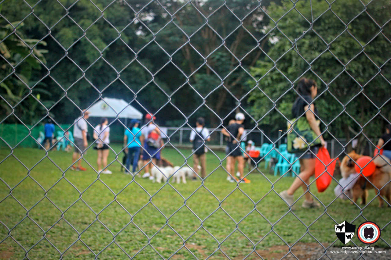 Homeowners had a blast at Ayala Alabang's Off-Leash Dog Park