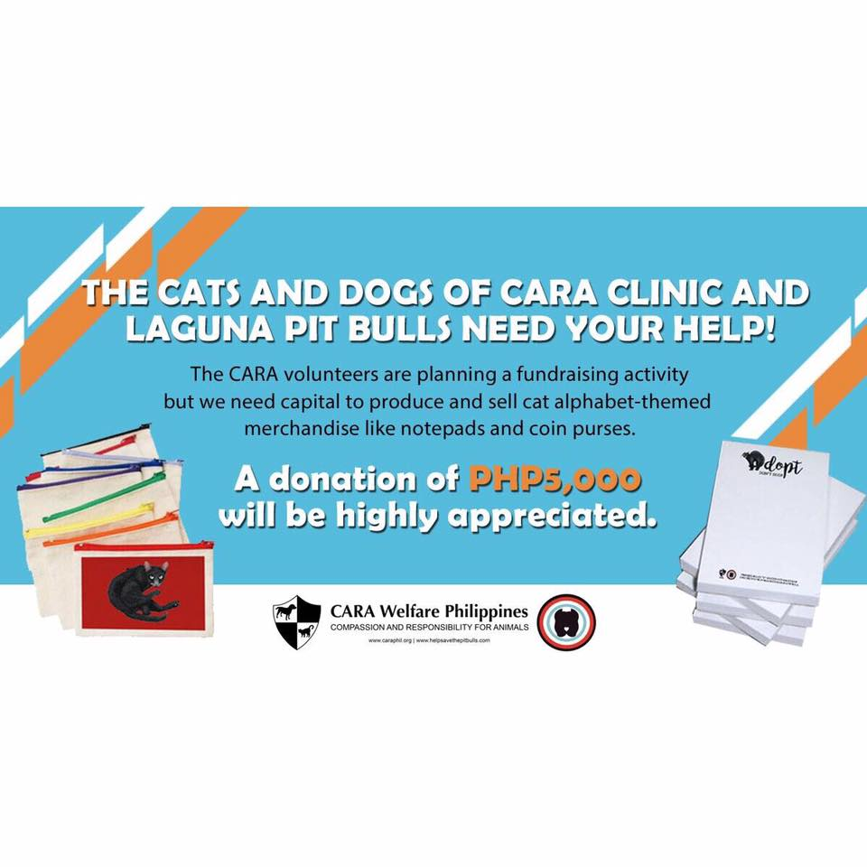 November 2017 - CARA Fundraising Donations Wagtales 1 - CARA Welfare Philippines - AdoptDontShop