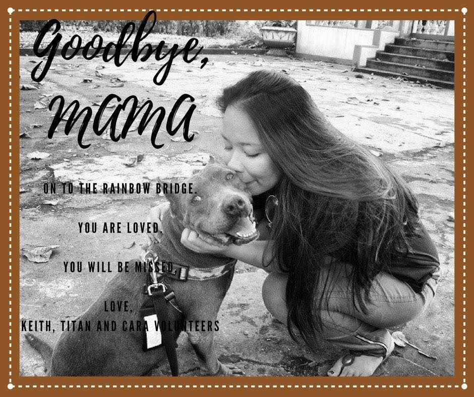November 2017 - LPB - Mama - CARA Welfare Philippines - AdoptDontShop
