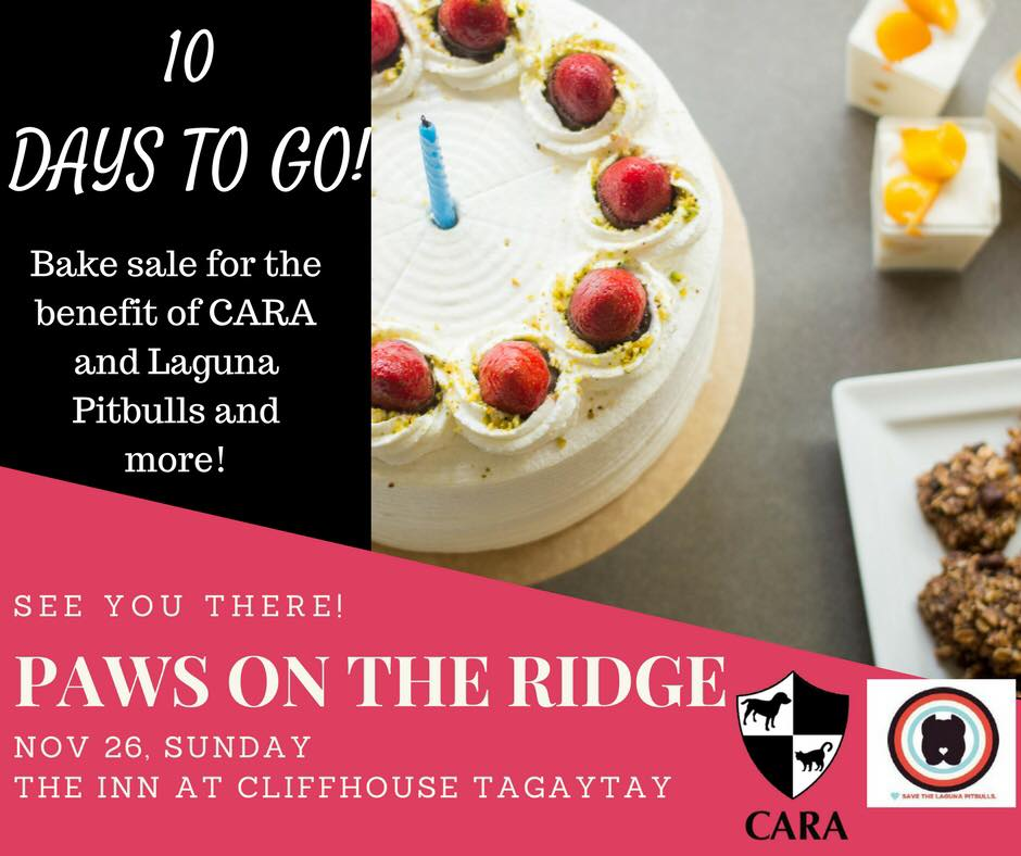 CARA Will Be Bringing Donated Baked Goods At Paws on The Ridge Event