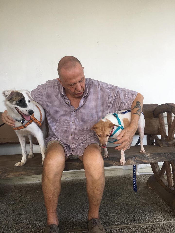 Jan 2018 - Adopted dogs Luna Jessica CARA Welfare Philippines - AdoptDont Shop