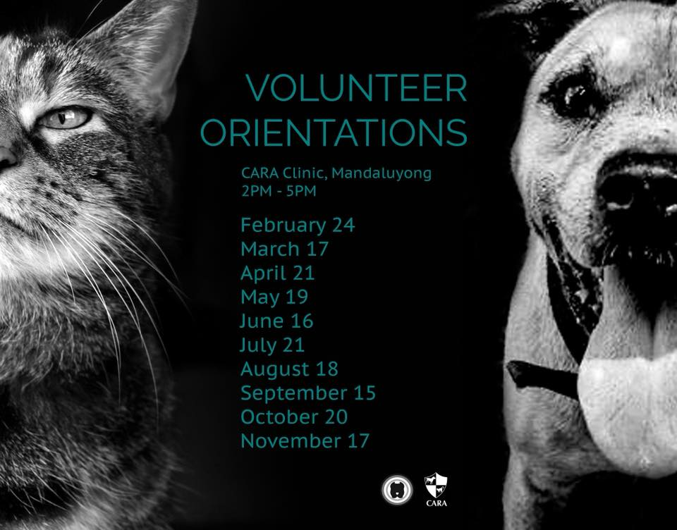 Here are CARA's Volunteer Orientation Dates for the Year