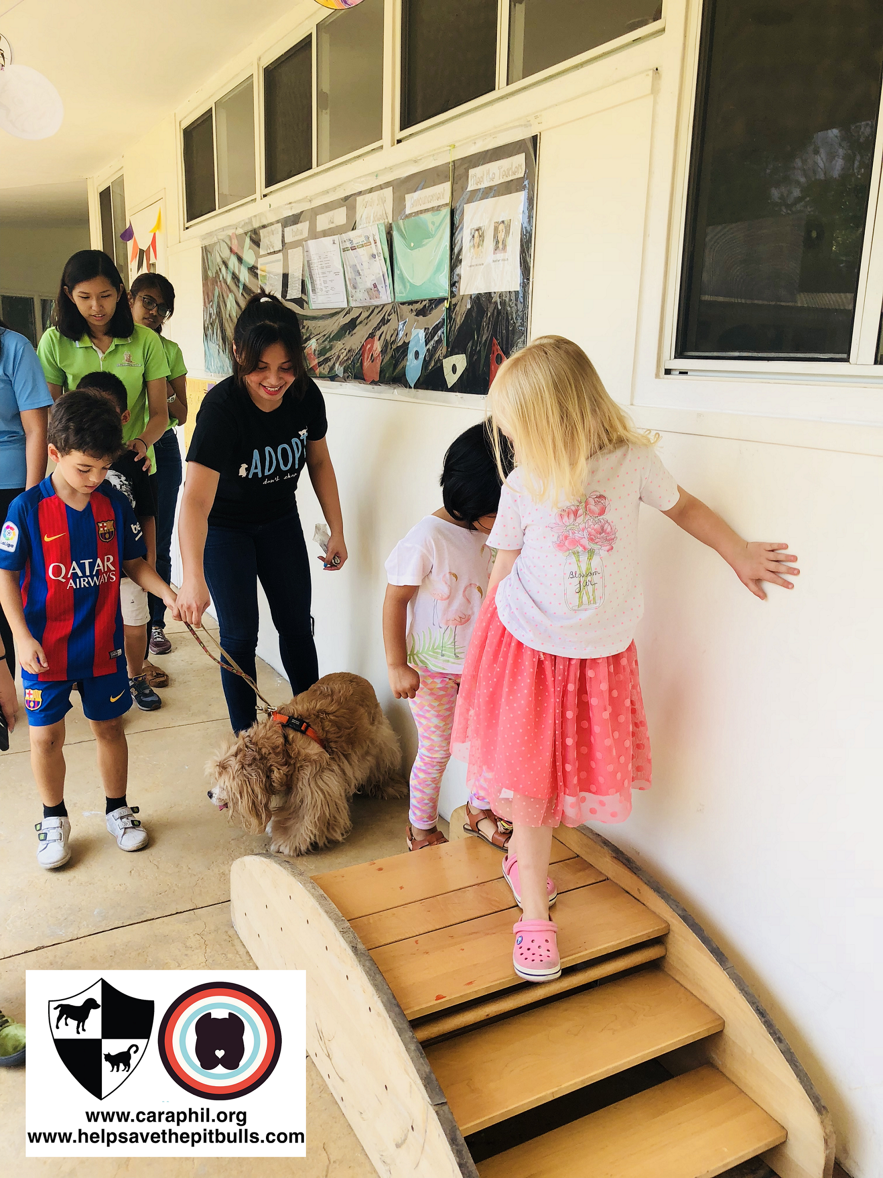 Fun at Animal Day: Animals in Action!