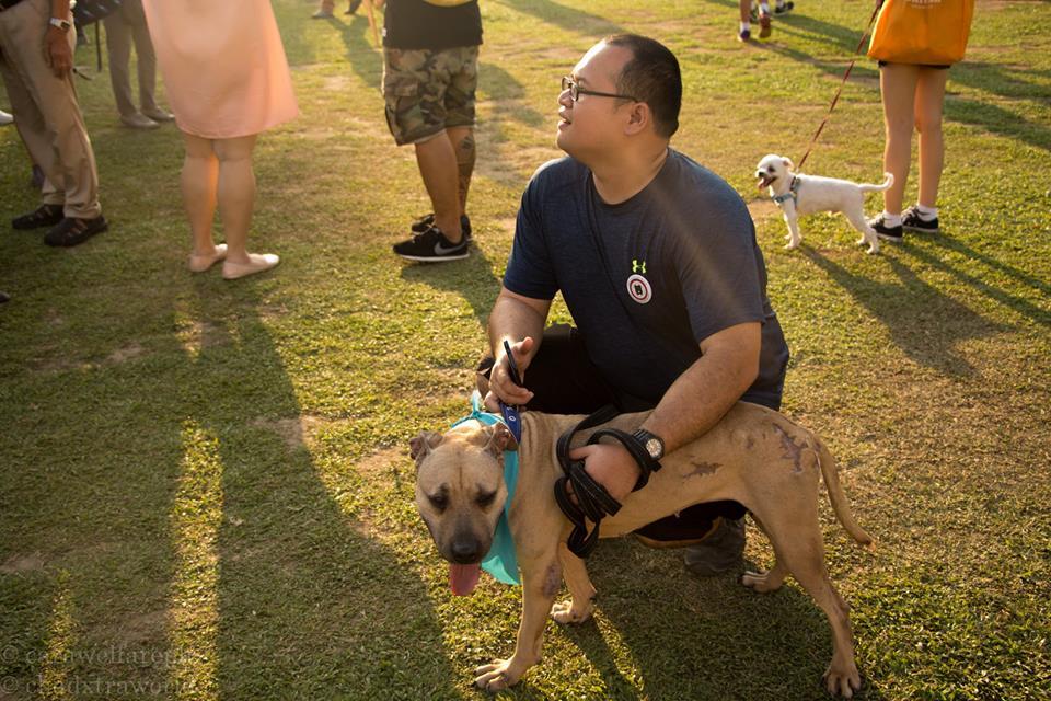 CARA Welfare Philippines - animal welfare - volunteer group