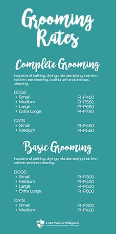Cara Welfare Philippines Pet Grooming